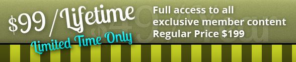 lifetime_member_bg